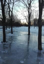 Парк во льду
