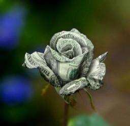 Денежный цветок