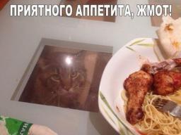 prijatnogo-appetita-zhmot