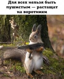 Добрый пушистик