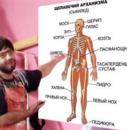 Анатомия с Равшаном