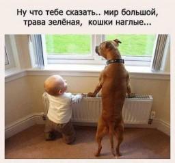 mir-bolshoi