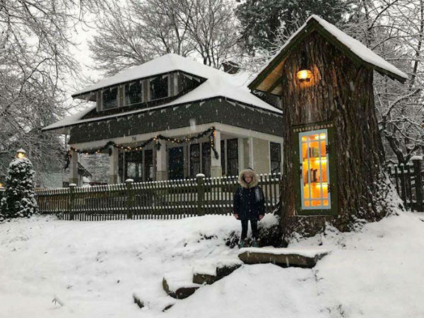 Библиотека в дереве