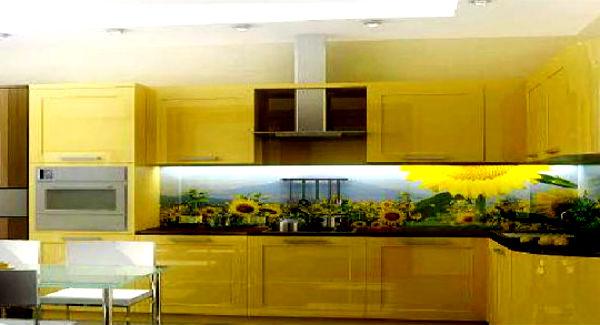 Скинали - фартук для кухни из стекла