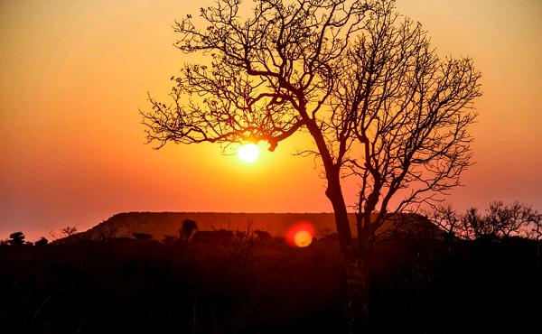 10 интересных фактов об Африке