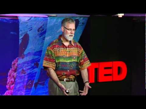 Rob Dunbar: The threat of ocean acidification