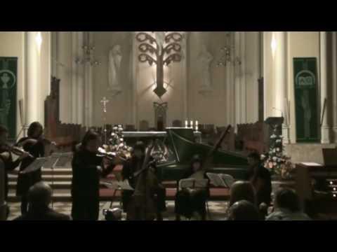 Вивальди. Времена года (зима). Исп. Ансамбль Bach-consort