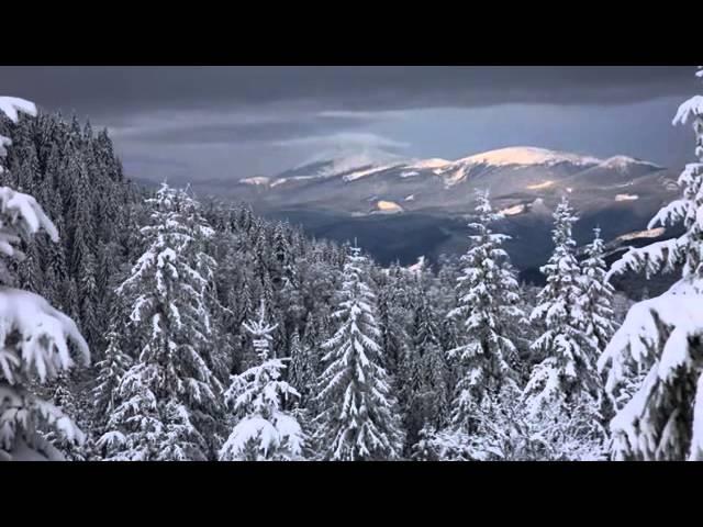 Антонио Вивальди. Времена года. Зима (3 части)