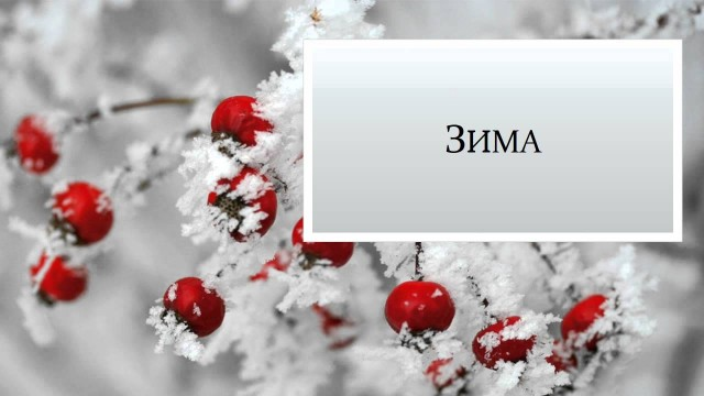 Russian Seasons - Времена Года по-русски