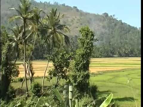 Путешествие по Шри Ланке Путешествуем вместе Документальный фильм