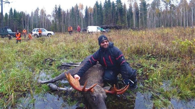 Охота #151 лось подранок, загонная охота