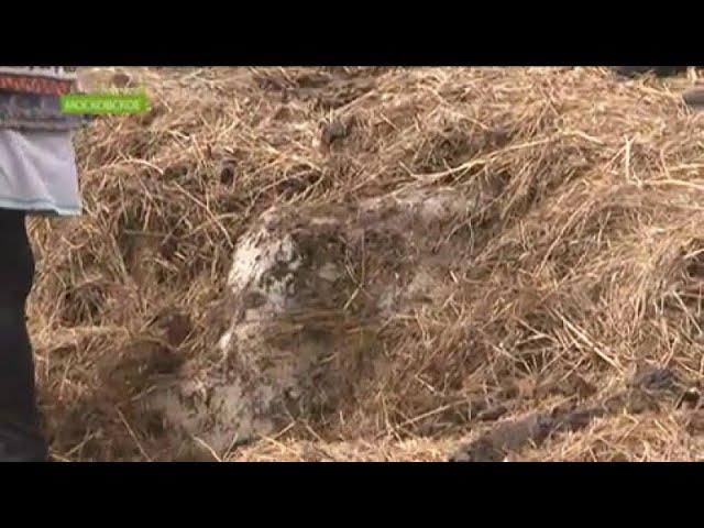 В Хакасии у жителей села Московское в огороде ледник