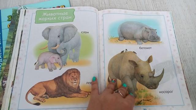 Знакомство с окружающим миром и первая книга малыша