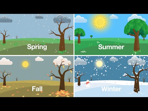 Seasons Song (Learn the Seasons of the Year for Kids)