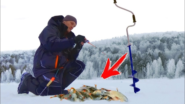 ЗАЧЁТНАЯ РЫБАЛКА ОТ ДУШИ! Зимняя рыбалка Ловля на безмотылку (чёртик) Плотва, подлещик, окунь