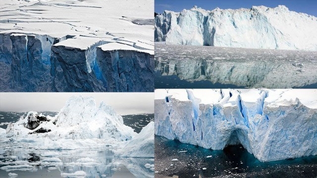 Effects of Global Warming in The Arctic Circle And Many More
