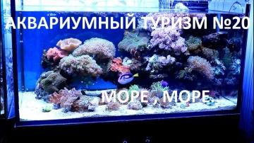 Аквариумный туризм№20 (Шикарный морской аквариум в городе Екатеринбург)