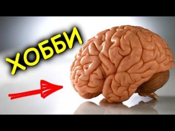 Хобби - Быстро Развивающие Интеллект [BrainShow]