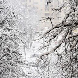 Синоптики предупредили жителей москвы о резком похолодании